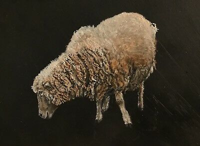 Sheep Original Oil Painting on Box Canvas by Sian Sloman