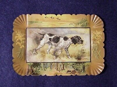 Young Jingo~Bird Dog~ Adv.tray