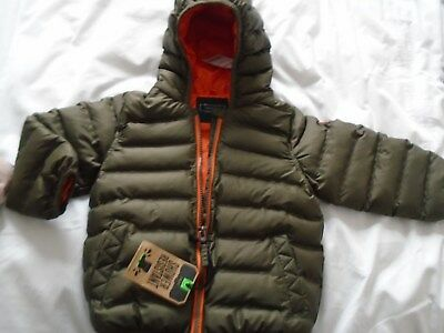 Brand New Next Little Boys Hooded Padded Jacket Age 12-18 Months