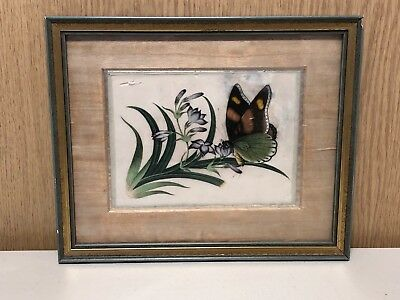 Framed Antique/Vintage Chinese Silk Picture Flower & Butterfly