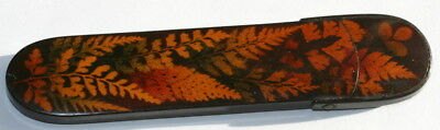 Excellent Cond. C 1820 Fern Ware Mauchline Spectacles Case Etui , Treen
