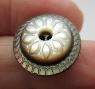 """Beautiful Antique~ Vtg Victorian Carved Smokey MOP Shell Whistle BUTTON 3/4"""" (R)"""
