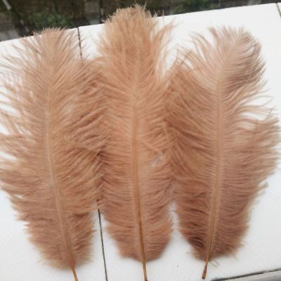 FEATHERS New Colour 5''- 7'' LONG LATTEE  OSTRICH FEATHERS X 5 FREE Postage.