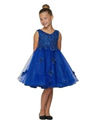 79c176059 Big Girls Royal Blue Pearl Sequin Tulle Party Junior Bridesmaid Dress 8-12