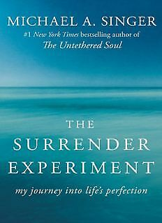 The Surrender Experiment: My Journey into Life's Perfection (E-B00K & AUDIOB00K)