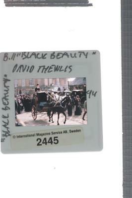 35mm Slide of David Thewlis as Jerry Barker in Black Beauty.