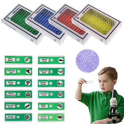 48pcs Plastic Prepared Microscope Slides Sample Animals Insects Plants Flowers