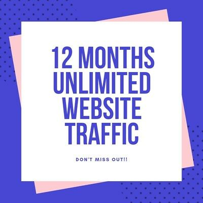 1 Year Unlimited Real Traffic, 12 Months of Real Human Visits, Boost SEO + Stats