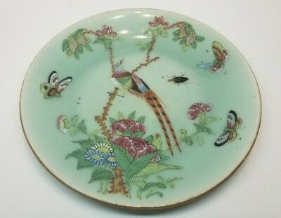 Antique Chinese Canton Celadon Porcelain Painted Birds Butterfly Plate Signed