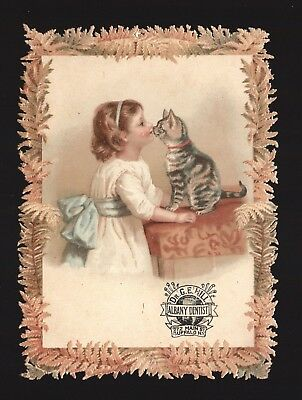Original 1880s Trade Card - Dr G.E. Hill Albany NY Dentist - Girl With Cat