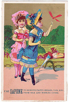 Rare Antique Sapone Cleanser  Victorian Trade Card - Carbondale Pennsylvania Pa