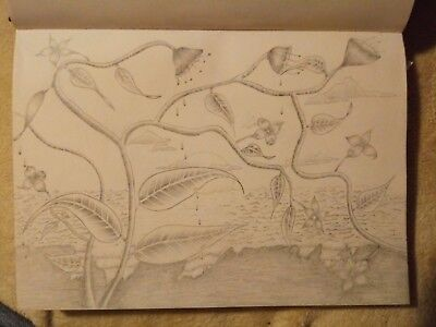 Art Drawing By Artist Original Graphite With Nature View