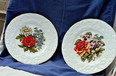 Two Vintage Coalport Christmas Plates with flowers Bone China Made In England