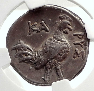 KARYSTOS in EUBOIA Ancient 300BC RARE Silver Greek Coin COW ROOSTER NGC i75084