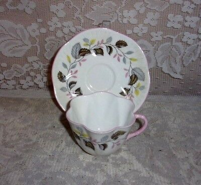 Shelley Bone China Ferndale Dainty Tea Cup And Saucer Pink Piping
