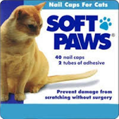 Soft Paws Feline Kit Large Nail Caps Stop Scratching Cat Claw 40 Count 2 Glues