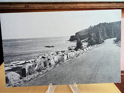 Postcard Otter Cliffs & Shore Road Acadia National Park Bar Harbor Maine