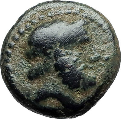 ARADOS in PHOENICIA Authentic Ancient 206BC Greek Coin w ZEUS & GALLEY i75424