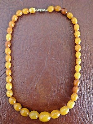 Rare Antique Baltic Amber Butterscotch Egg Yolk Necklace Fully Tested - 33.5G