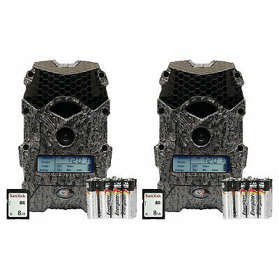 Wildgame Innovations Mirage 16 Lightsout 16MP Game Camera Kit (2 Pack)