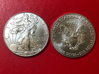 America - USA 1 Dollar 2019 American Silver Eagle Walking Liberty km#273 DOLLARO