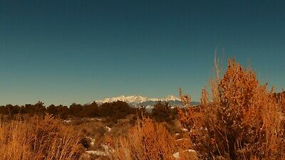 GORGEOUS 5+ Acres CO Land - Forested, Mountain Views - MONTHLY TERMS OFFERED!