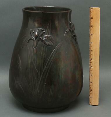 Large 19thC Antique Japanese Meiji Period, Signed, Iris Flowers Bronze Vase, NR