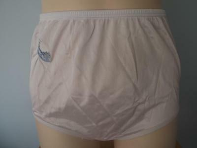a758d69290 Vintage Panties Briefs Lace Cindy Ann Sheer Nylon Silky Antron Iii Sissy S  - M