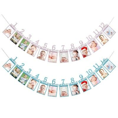 Baby Birthday Bunting Garland First 1-12 Month Photo Record Banner Party Decor