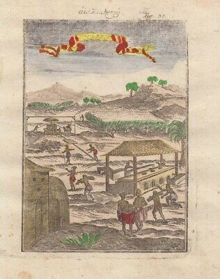 1685 Fine Mallet Engraving of Sugar Plantation, West Indies