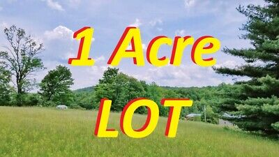 AMAZING 1 Acre LOT in Damascus PA Mountains NY NJ CA NH VT CT DE FL MN NC AZ MD