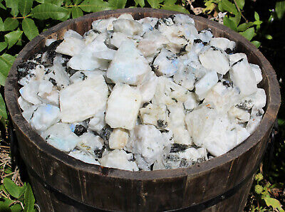 500 Carat Lot Natural Rough Rainbow Moonstone Crystals (Raw Stone, 100 Grams)