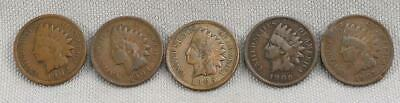 1902, 1904, 1905, 1906, 1907 Indian Head Cents! Winner Gets All 5!