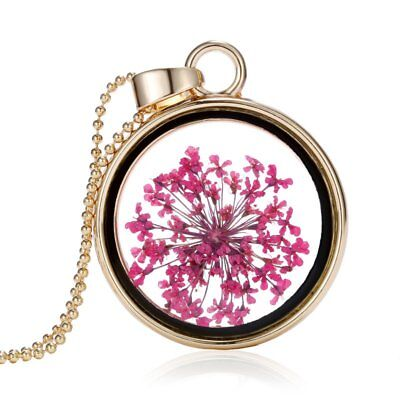 Natural Real Dried Flower Resin Round Glass Floating Locket Pendant Necklace Hot