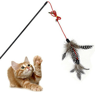 Steel Wire Kitten Cat Toy Feather Rod Teaser Bell Play Pet Dangler Wand IA