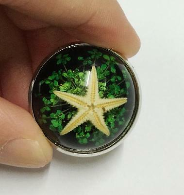 12 pcs Retro Vintage Fashion Style Starfish Ring hot