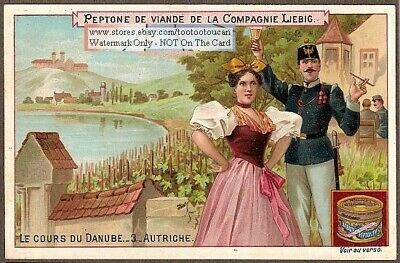 Danube River In Austria Autriche History  NICE 1898 Trade Ad Card