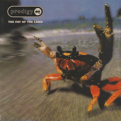 Prodigy, The - Fat of the land (Vinyl 2LP - 1997 - EU - Reissue)