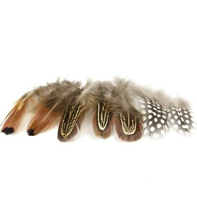 300pcs 5-8cm Natural Pheasant Feather carnival Diy costume Headress  Craft