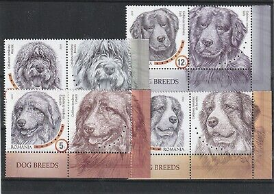 2019 Romania Stamps Dog Breeds Labels Mnh Animals