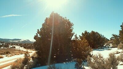 YOUR DREAM LAND - 4.9 Beautiful CO Acres - Mt. Views, Forested, AFFORDABLE!!!