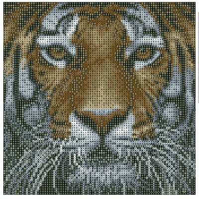 30*30cm Tiger Wall Arts -DIY 5D Diamond Painting by Number Kits for Home Decor