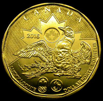 2016 Canada Loonie 1 Dollar GEM Uncirculated LUCKY LOONIE GEM BU!