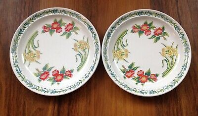 "2 X Portmeirion Flowers Of The Month Susan Williams-Ellis 10.25"" Dinner Plates"