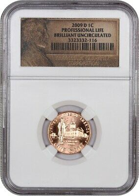 2009-D Lincoln-Professional 1c NGC Brilliant Uncirculated - Lincoln Cent