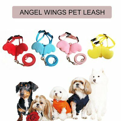 Cute Angel Wing Pet Dog Leashes Collars for Small Pet Adjustable Dog Harness 4W