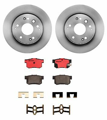Rear 282 mm Brake Discs Rotors And Ceramic Pads Slot Kit Fits 99-03 Acura TL