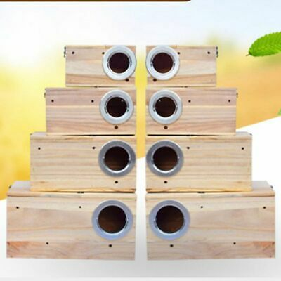 Nesting Boxes Hot Solid Wood Nest Box For Small Birds Parrot Budgies Finches