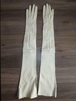 Antique/Vintage Long Ivory Women's Leather Gloves - Size 5 1/2