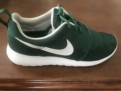 1a33672f653d NIKE ROSHE RUN Iguana Forest Green Mens US Size 9 511881-313 ...